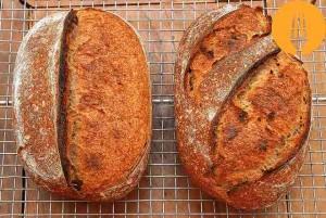 Pan de centeno y trigo con masa madre