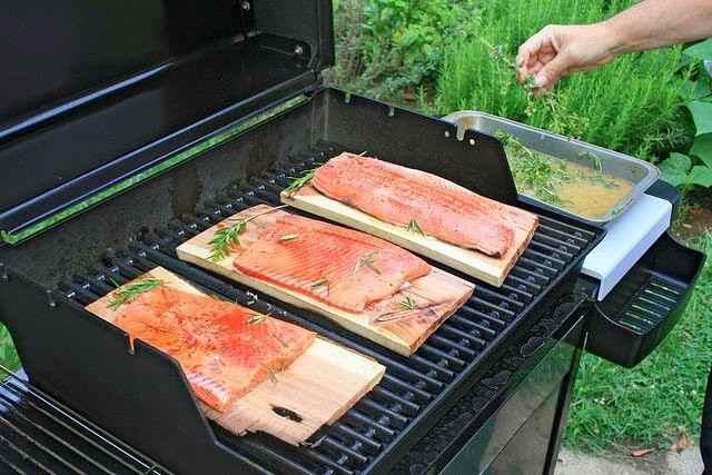 Cómo cocinar salmón y las mejores Vídeo recetas