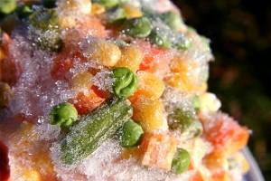 El peligro en la Temperatura de los alimentos