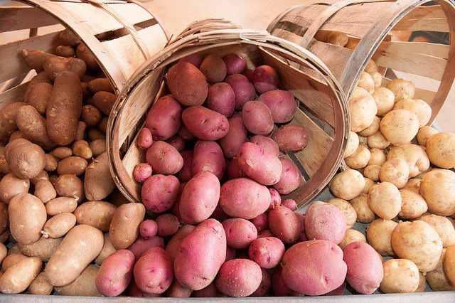 Los efectos tóxicos de las patatas