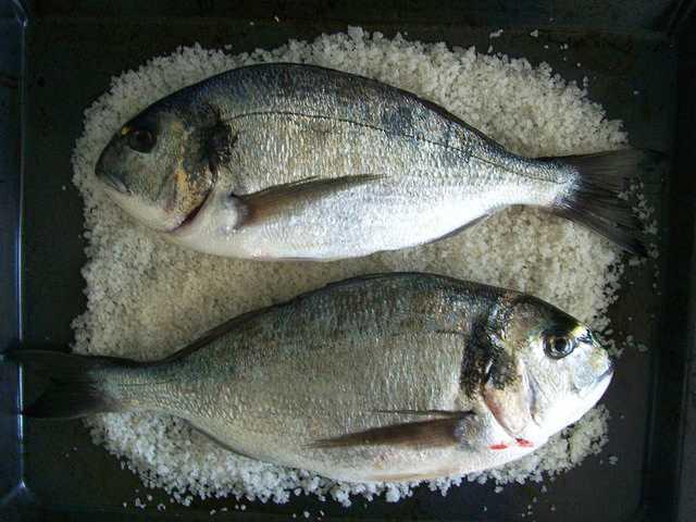 Cocinar con sal