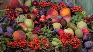 Frutoterapia: el Poder Sanador de las Frutas