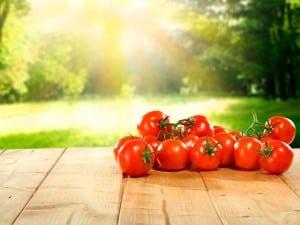Cómo Sembrar Tomate Pimientos Y Berenjenas