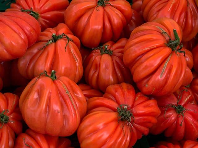 Tipos de tomates y su uso en cocina