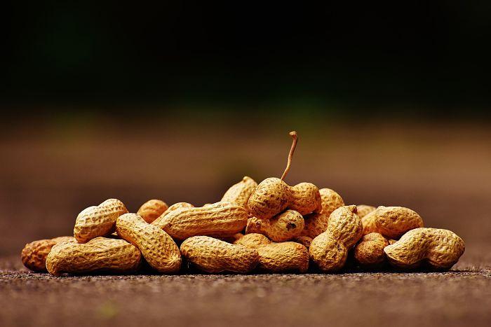 Beneficios y propiedades de los frutos secos
