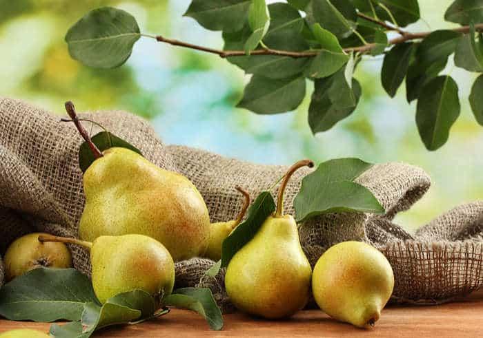 Ensalada de pera y champiñones