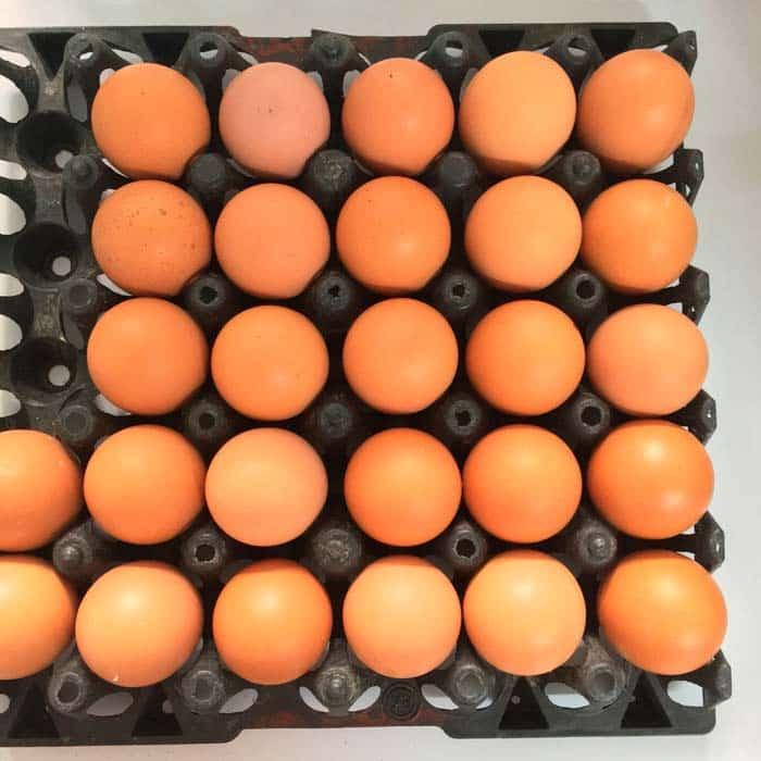 Fipronil: Huevos contaminados con insecticida