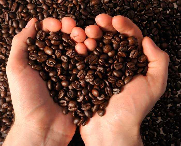 Descubre 7 usos de los Posos del Café en el Huerto Urbano