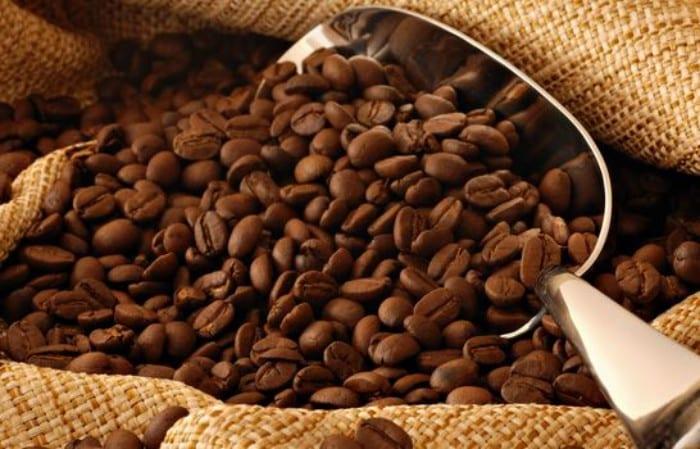 Flan de café fácil