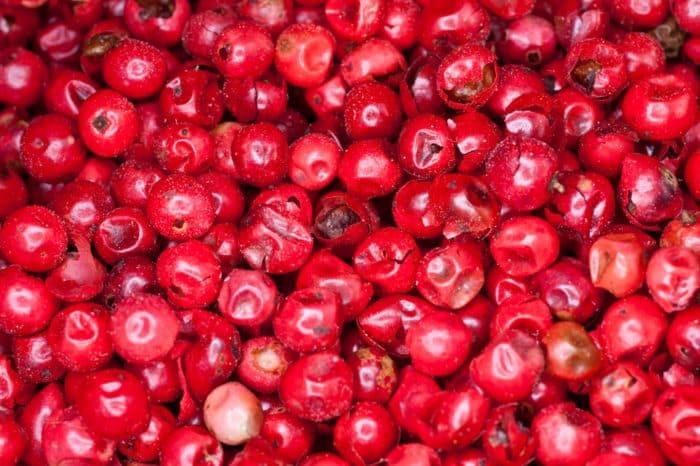 tipos de pimienta -- pimienta roja