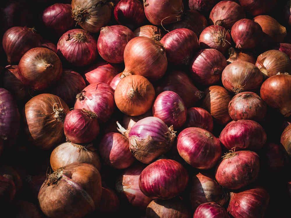 La cebolla: Propiedades y recetas