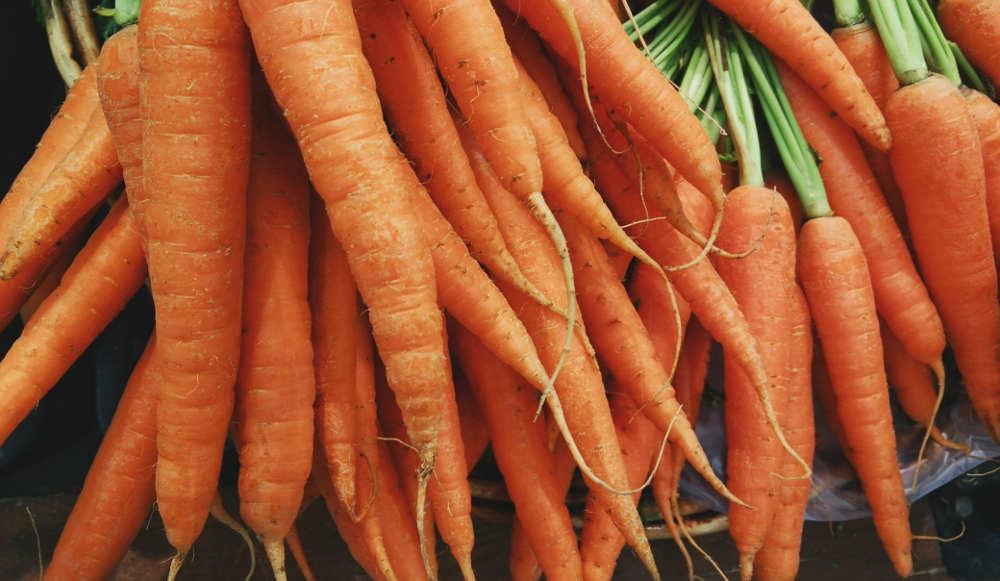 La zanahoria: Propiedades y recetas
