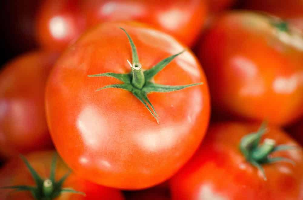 El tomate: Propiedades y recetas