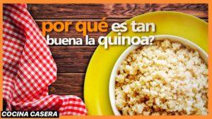 La Quinoa: Superalimento, Propiedades y Beneficios
