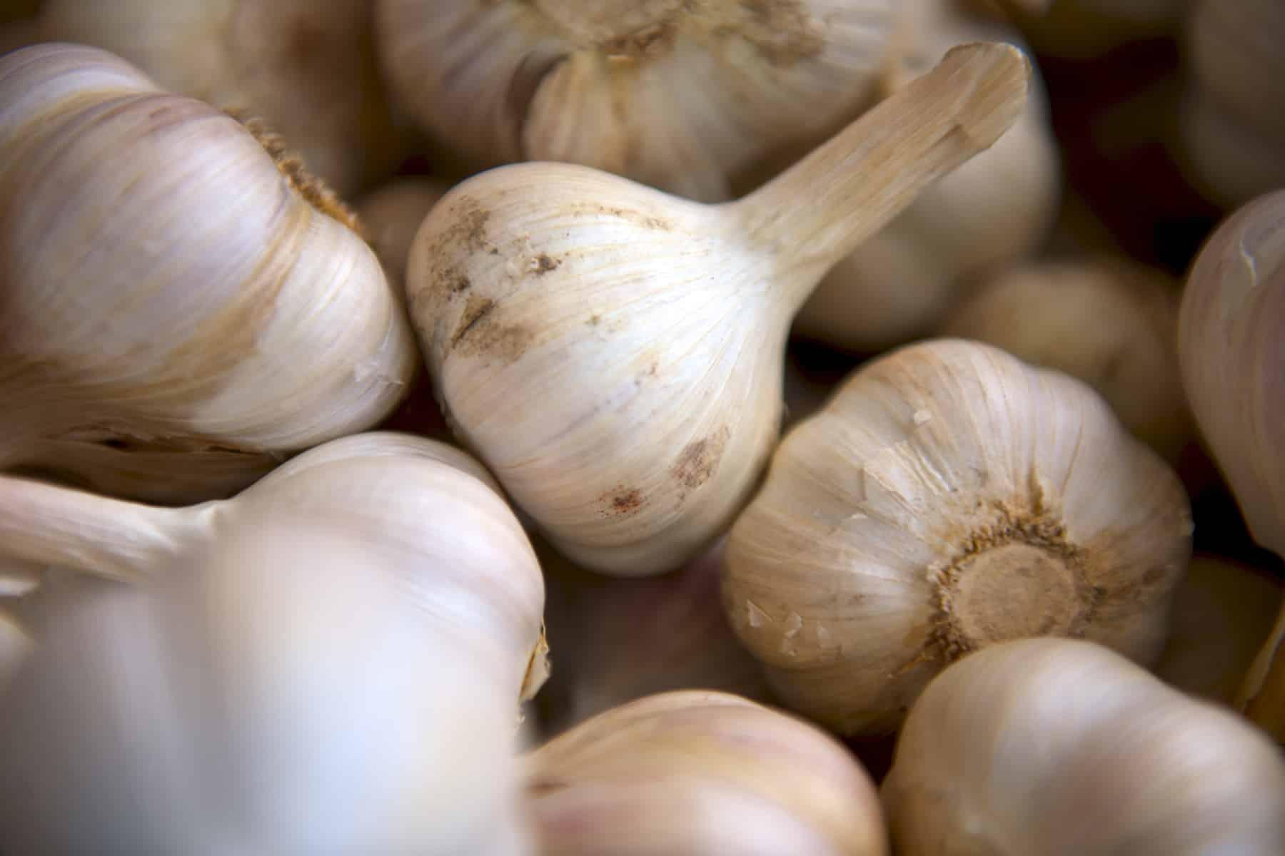 El Ajo Negro: Conoce sus beneficios y en qué se diferencia del ajo blanco