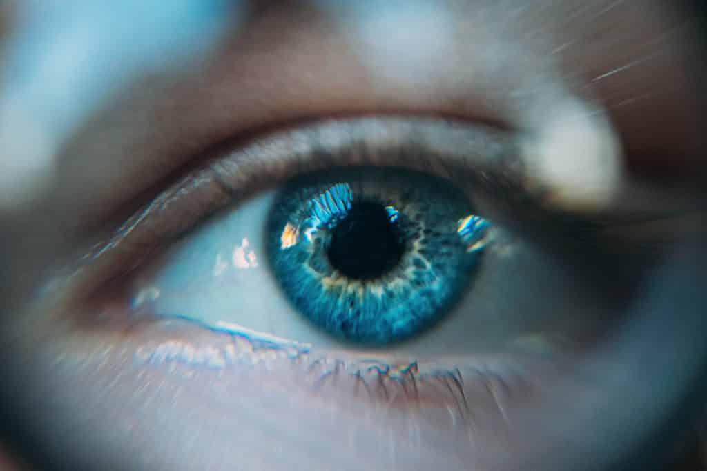 Los alimentos que más cuidan de tu vista