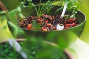 Descubre los alimentos mas saciantes que te ayudaran a comer menos