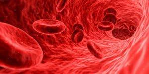 Hiperpotasemia: El peligro de tener el potasio alto en sangre
