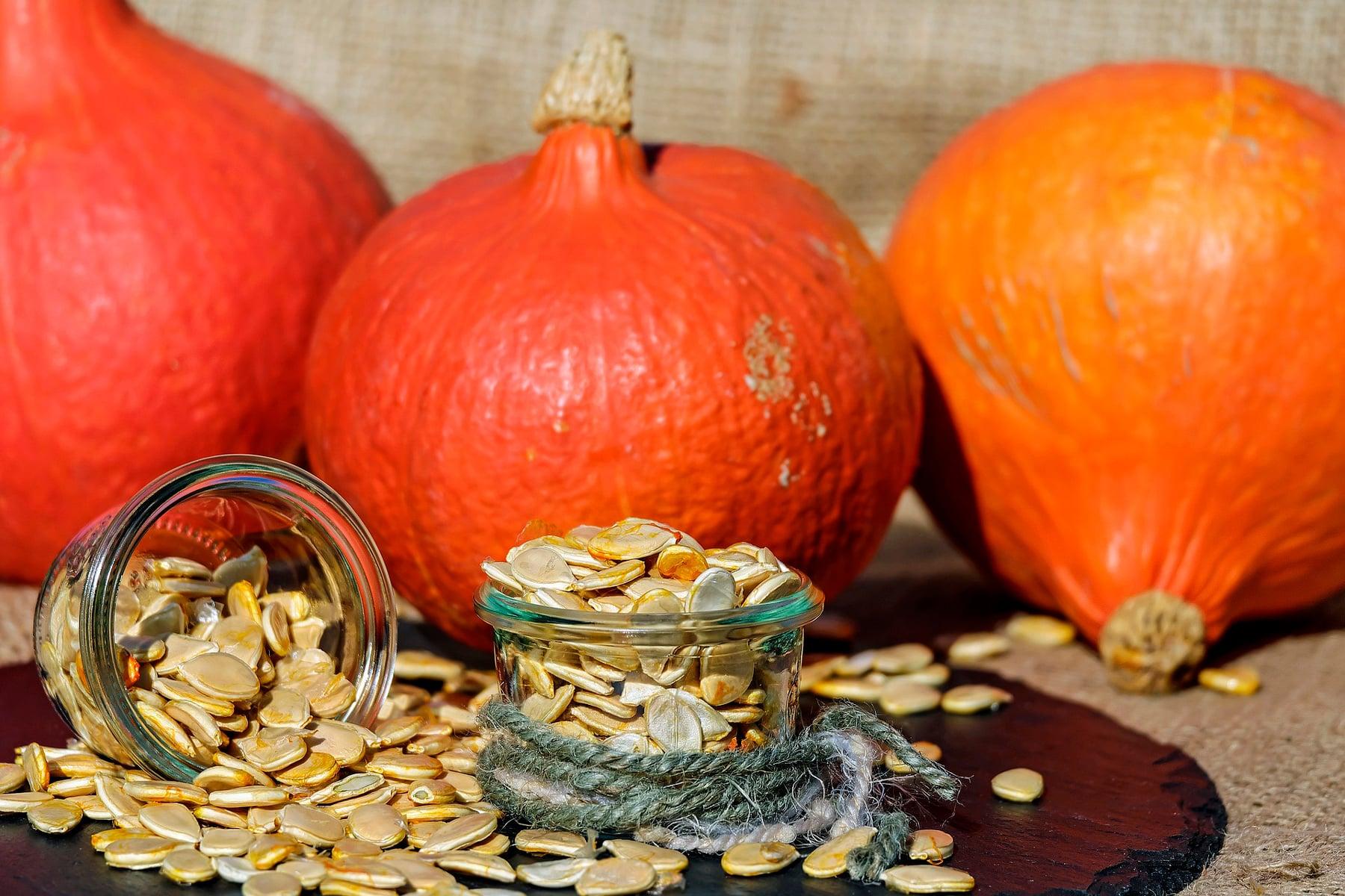 Pipas o semillas de calabaza: Te contamos sus beneficios nutricionales