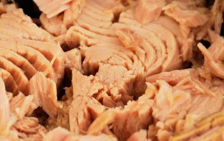 Cinco recetas con atún deliciosas y saludables que no tienen desperdicio