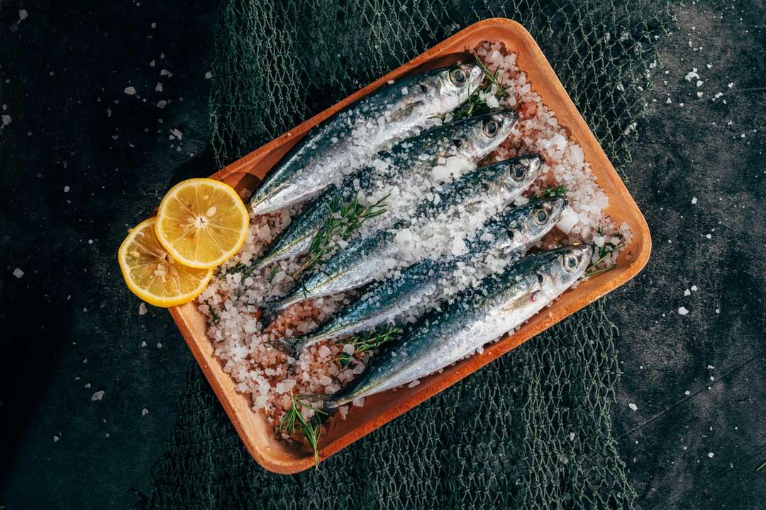 Pescados diversos, alimentos de temporada