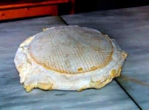Queso Flor de Guía, típico de la gastronomía canaria