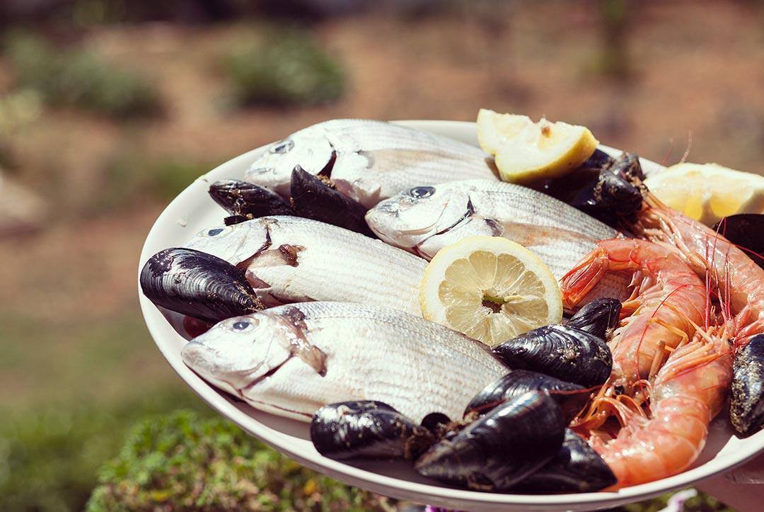 Pescados y mariscos en Valencia