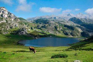 Naturaleza y gastronomía en Asturias a partes iguales