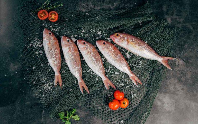 Los pescados más saludables y cómo cocinarlos