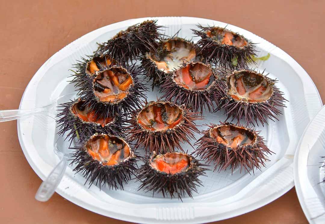 Plato de oricios, típico de la gastronomía en Asturias