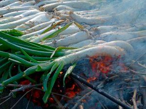 Calçots, uno de los tipos de cebollas