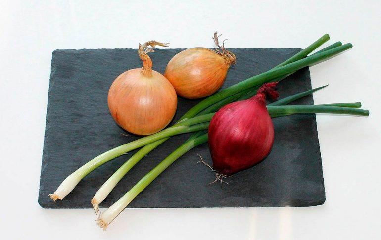 Tipos de cebollas y usos en la cocina
