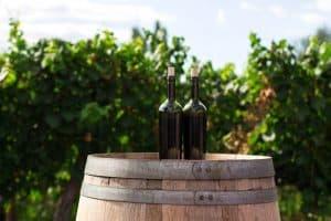 Qué son los llamados vinos verdes y cómo diferenciarlos