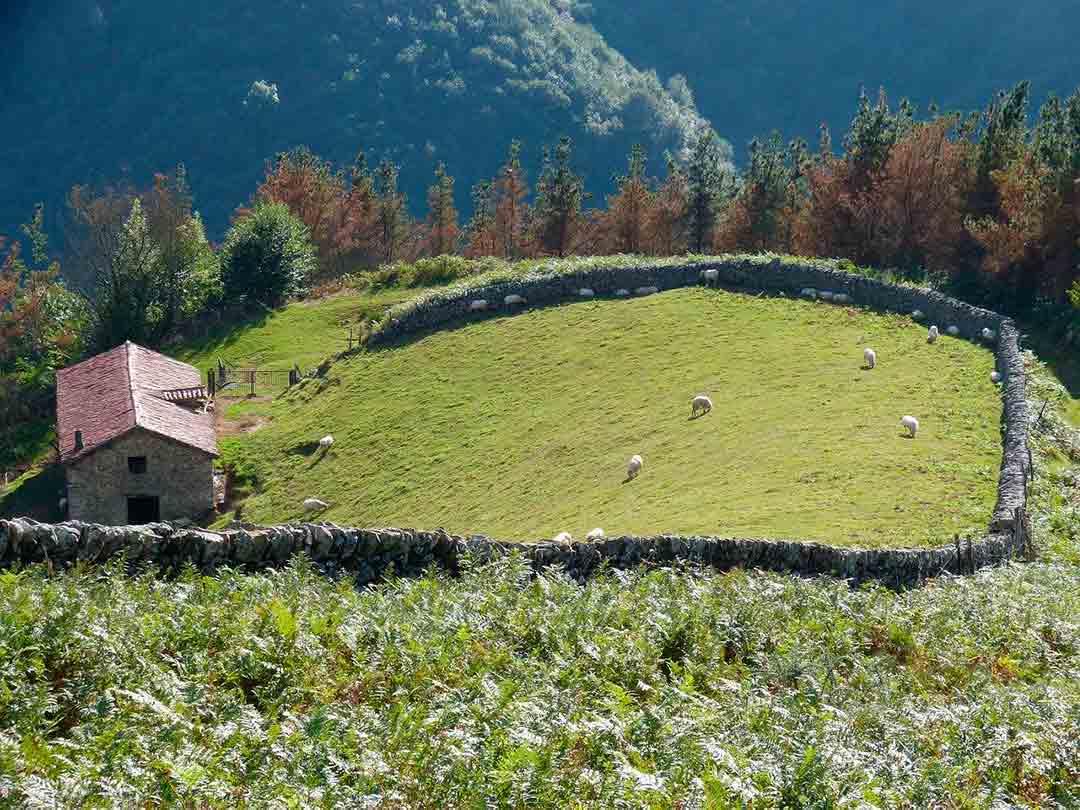 Caserío en el Pirineo Navarro