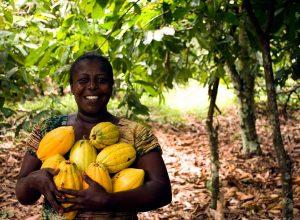 Mujer recoge papayas