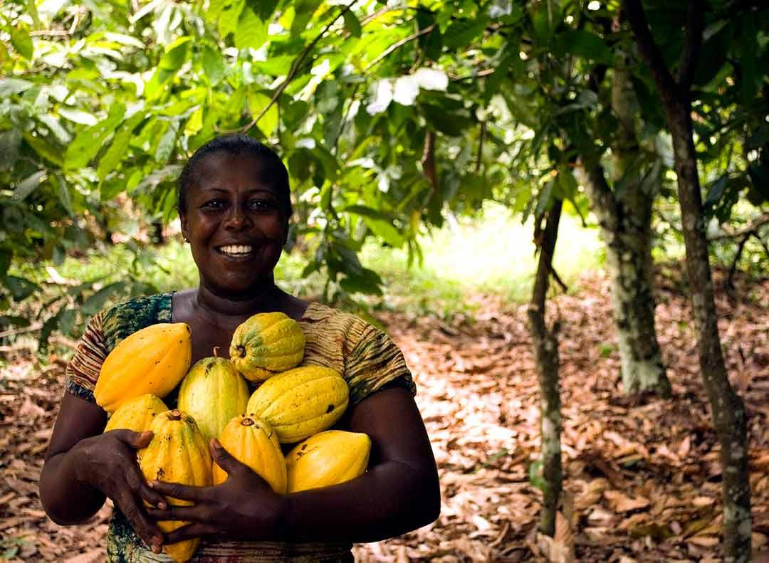 Mujer recogiendo papayas