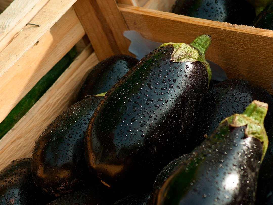 Caja con berenjenas, verduras de temporada de verano