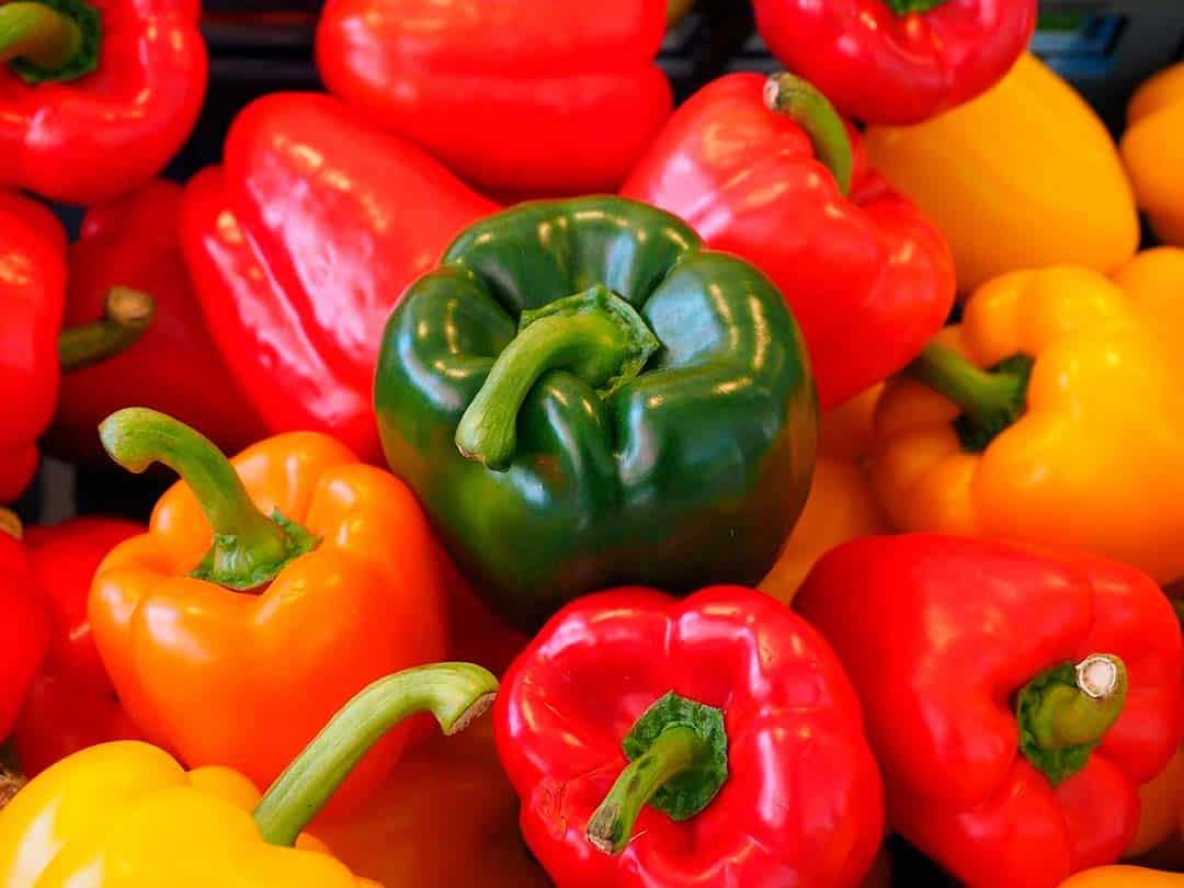 Pimientos, verduras de temporada de verano