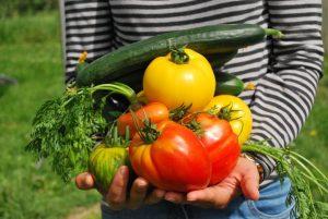 Dieta climática, qué es y cuáles son sus beneficios